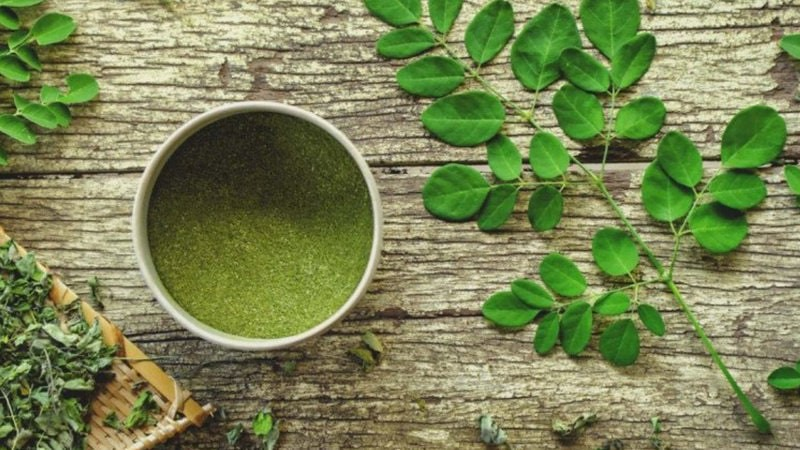 Drumstick ( Moringa )Leaves Benefits - How to Use Dosage & Side effects