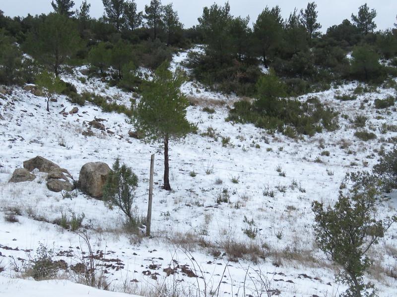 Neige 1er mars 2018 dans la vallée