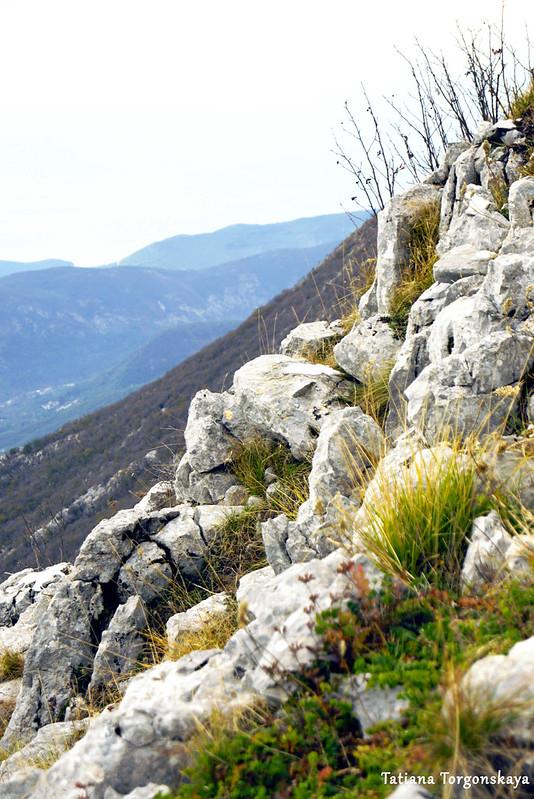 Горные склоны