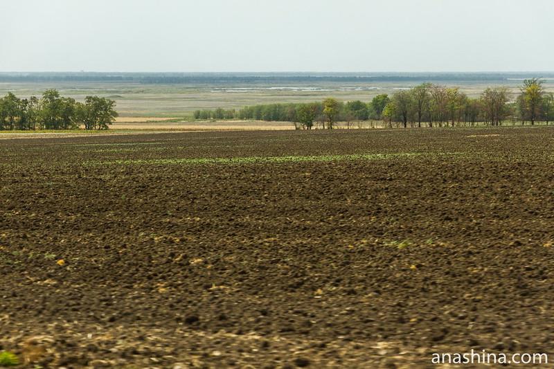 Бескрайние просторы Ростовской области