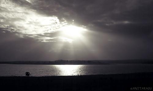 Sunlight | Anita