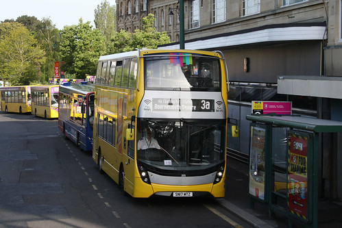 Yellow Buses 205 SN17MTZ