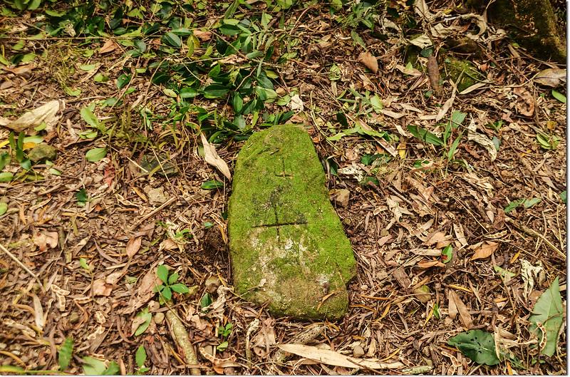 三縣界山冠字補山(31)山字自然石森林三角點(Elev. 957 m) 1