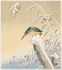 Kingfisher in the snow (1925 - 1936) by Ohara Koson (1877-1945). Original from The Rijksmuseum. Digitally enhanced by rawpixel.
