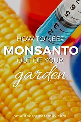 Monsanto is a compan