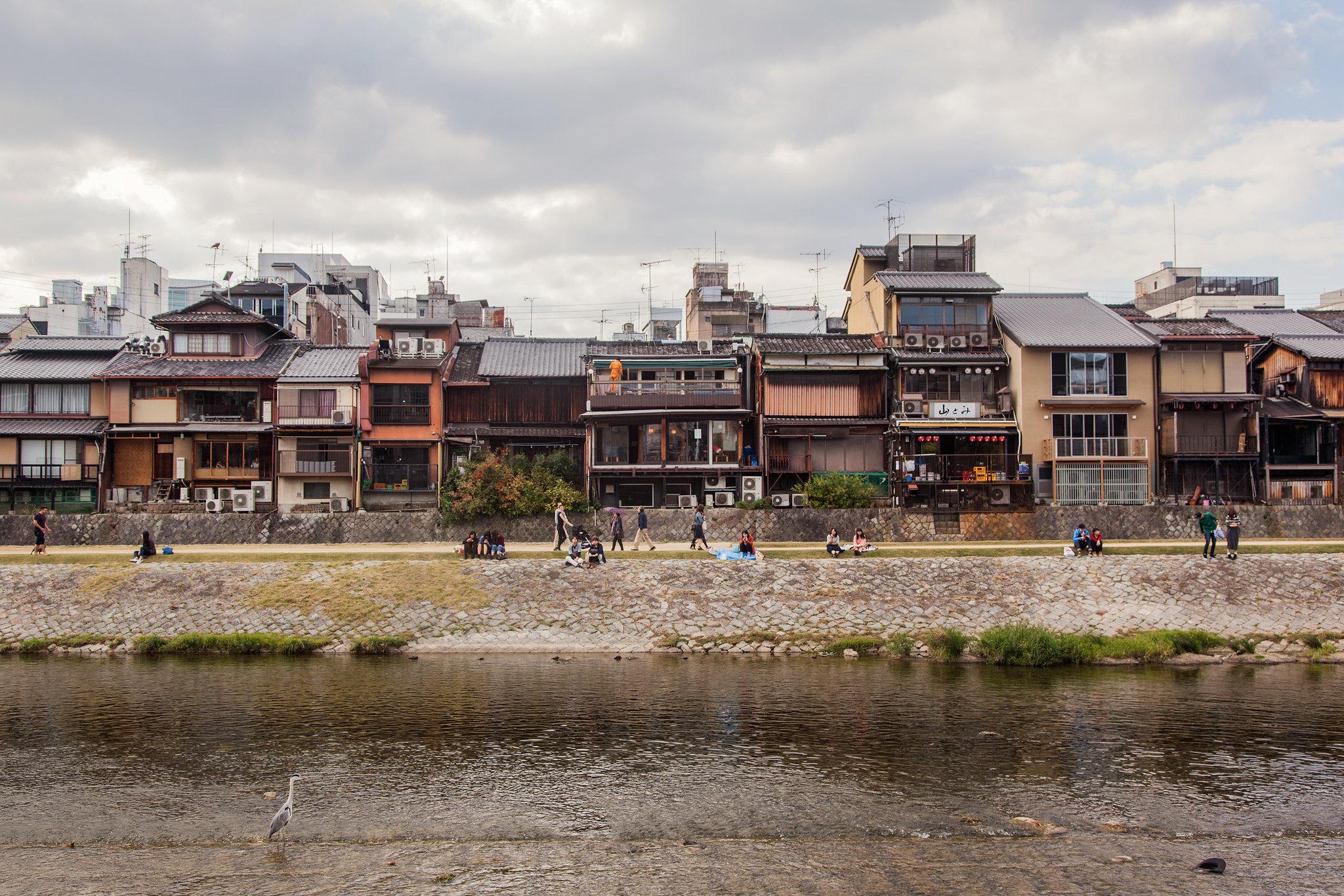 Kamo River 鴨川