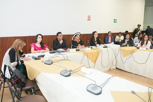 COMISIÓN OCASIONAL PARA ATENDER TEMAS Y NORMAS SOBRE NIÑEZ Y ADOLESCENCIA. QUITO, 6 DE DICIEMBRE 2018.