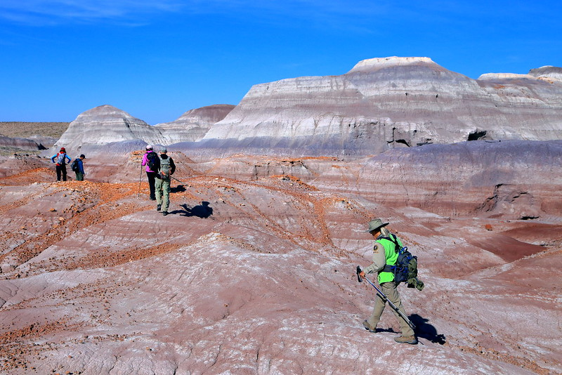 IMG_0328 Hikers in Red Basin, Petrified Forest National Park