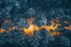 Snowy park | Kaunas aerial
