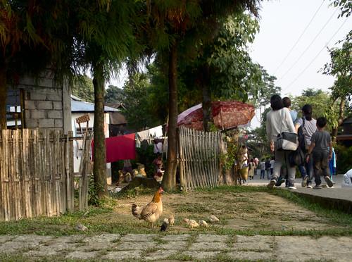 mawlynnong-village-1