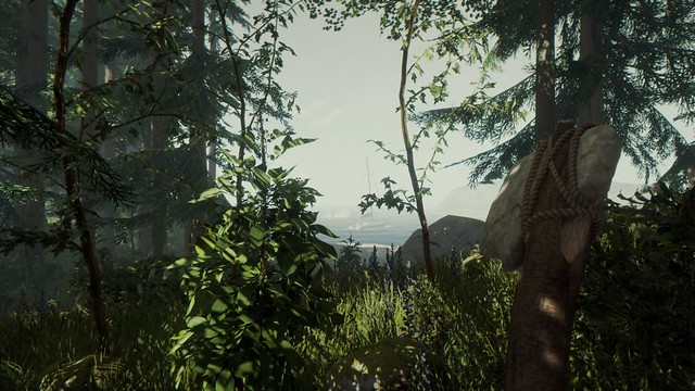 How To Survive The Forest Out Tomorrow On Ps4 Playstation Blog