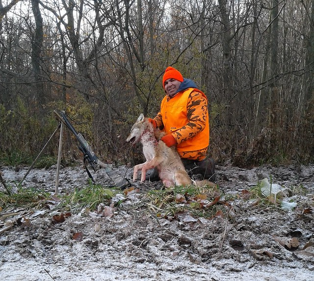 Muzzleloader Coyote And Deer Down