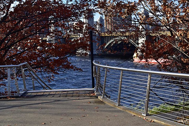 Appleton Bridge (5)
