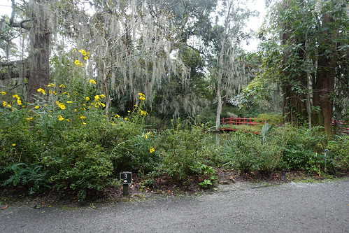 A Garden at Magnolia Plantation. From History Comes Alive in Charleston