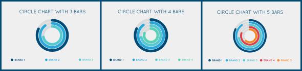 Circle Chart Preset 1_00084