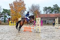 Venteille-concours-Marcheprime-2018-12-09-016 (Estelle) - Photo of Marcheprime