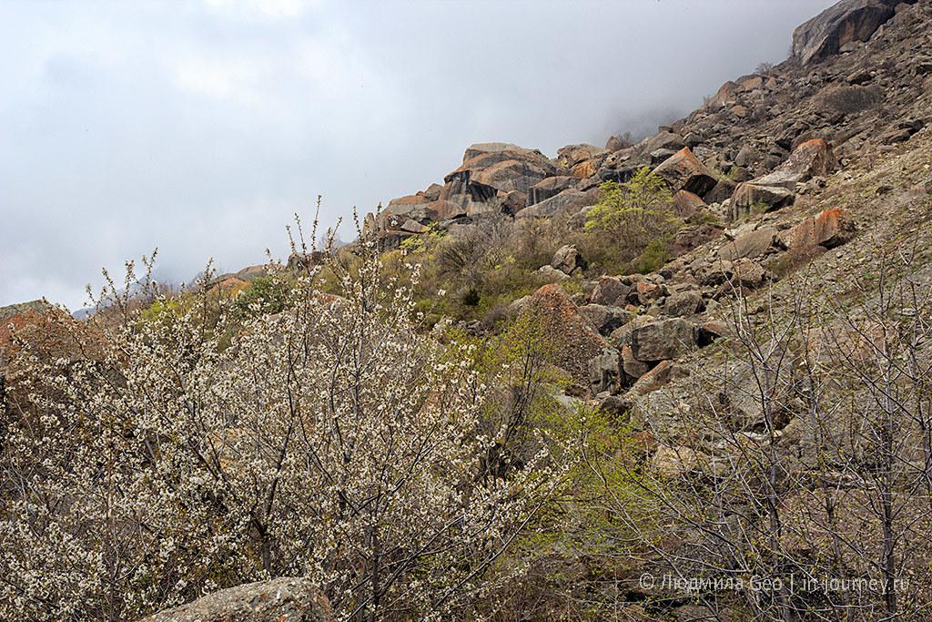 склоны Долины Привидений в Крыму