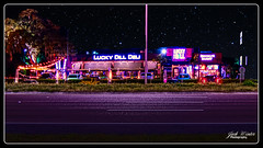 Lucky Dill in Palm Harbor Florida