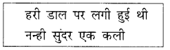 NCERT Solutions for Class 2 Hindi Chapter 8 तितली और कली 5