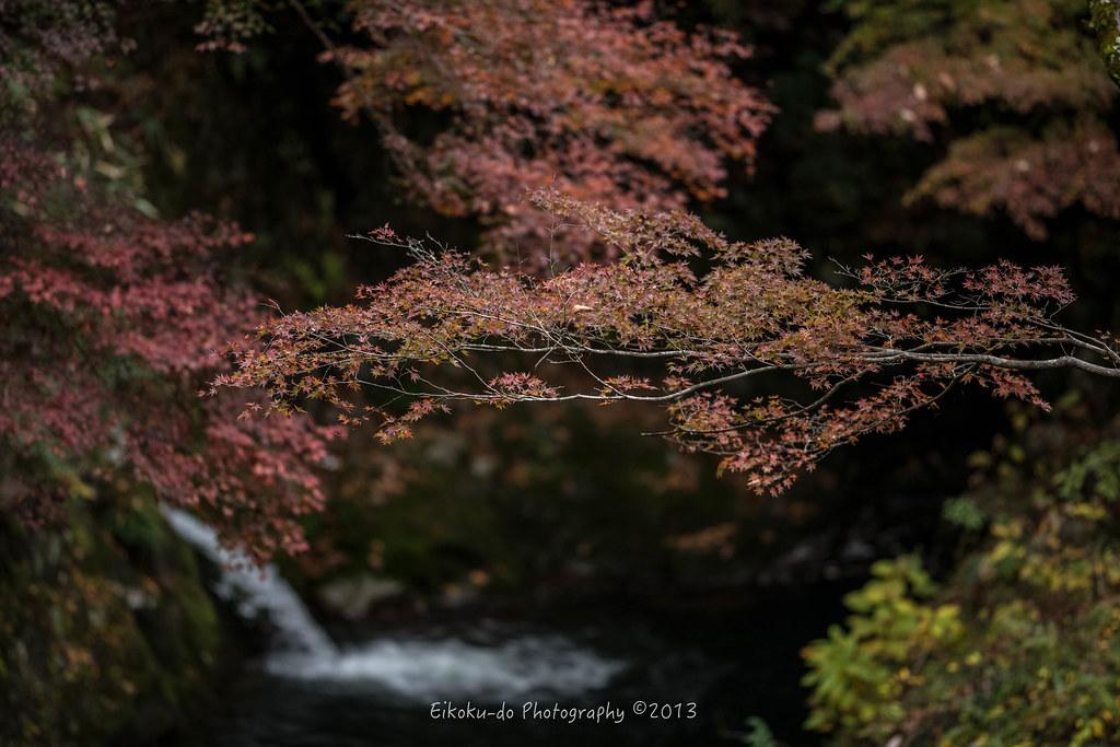 花貫渓谷/茨城県