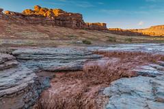 Indian Creek Flash Flood near Canyonlands National Park