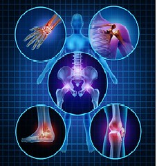 Series of Orthopaedic Research and Rheumatology
