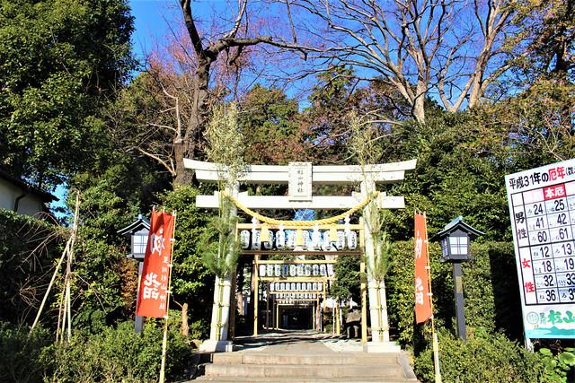 hoshikawasugiyamajinja004