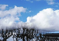 9 - Montceau-les-Mines, Fin d'hiver...
