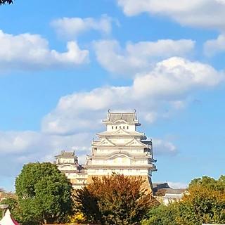 姫路城。 Himeji Catsle