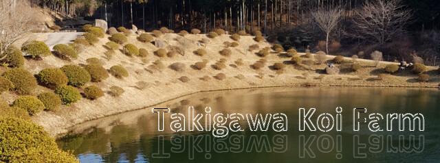 takigawa-01