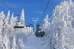 Aktuálně: o Vánocích se bude lyžovat téměř všude