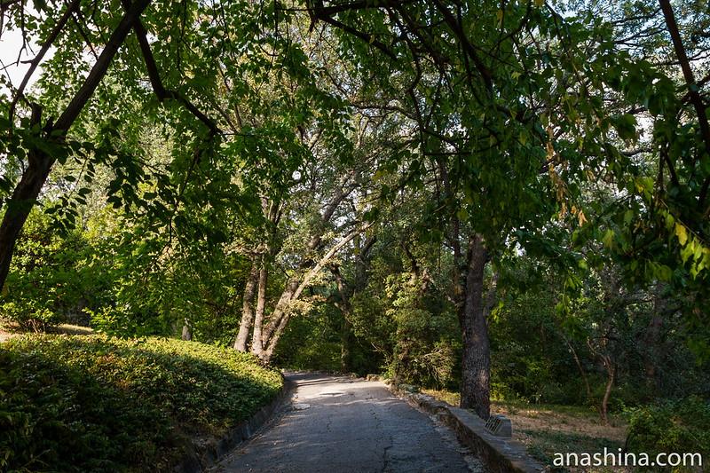 Массандровский парк, Ялта, Крым, Дорожка в парке