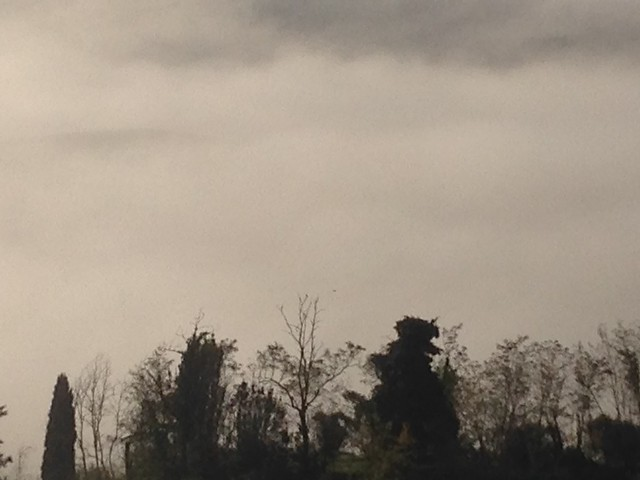 Tuscany hills in november1, Apple iPhone 5c, iPhone 5c back camera 4.12mm f/2.4