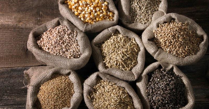 Cereali virt e pregiudizi oggi in eccellenze salernitane in tavola - Le virtu in tavola ...