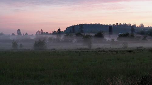 sunrise morning mist fog pink purple dawn barn silo