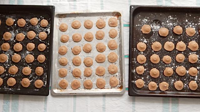 все печеньки