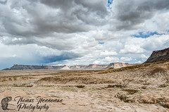 Mesa Verde from the South