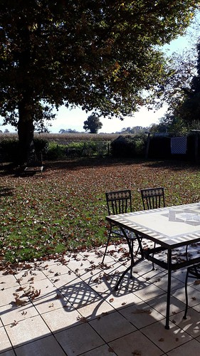 Terrasse d'automne