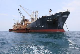 Iron Ore shipping
