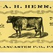 A. H. Herr, Mill Creek Dairy, Lancaster, Pa. by Alan Mays