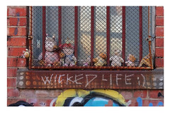 stuffies behind bars