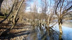 La rive du lac - Photo of Le Broc