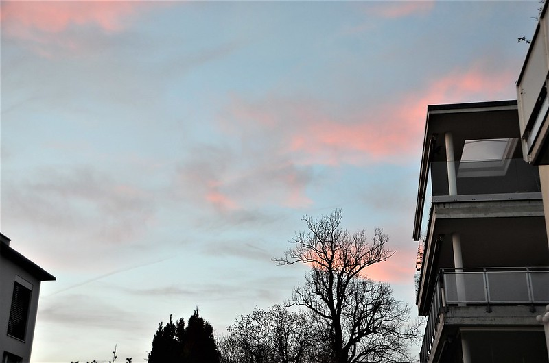 Afternoon sky 16.01 (1)