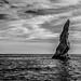 Seascape 2 - Neptune's Finger por KVSE