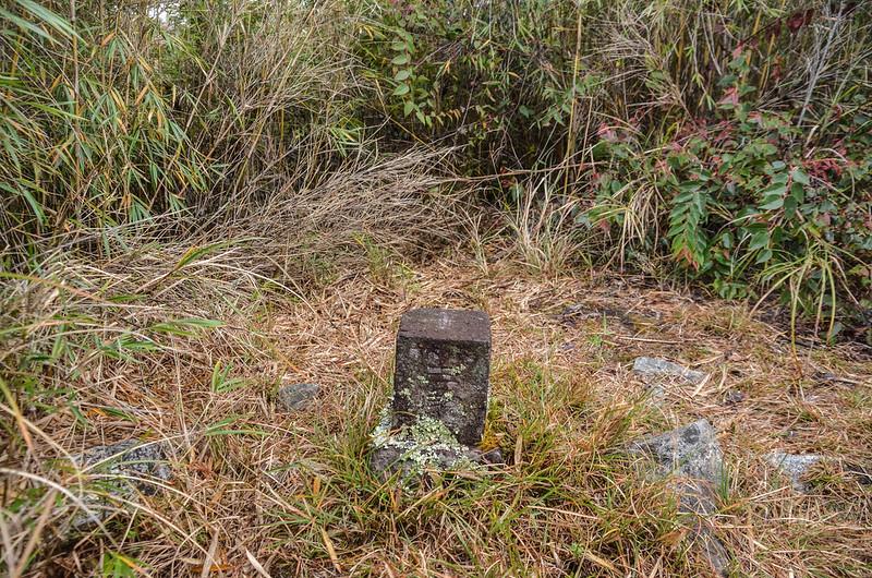 平石山西北峰冠字次山(01)的山字森林三角點(Elev. 2667 m) 2
