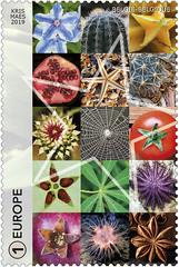 09 Géométrie dans la nature-étoil-timbB
