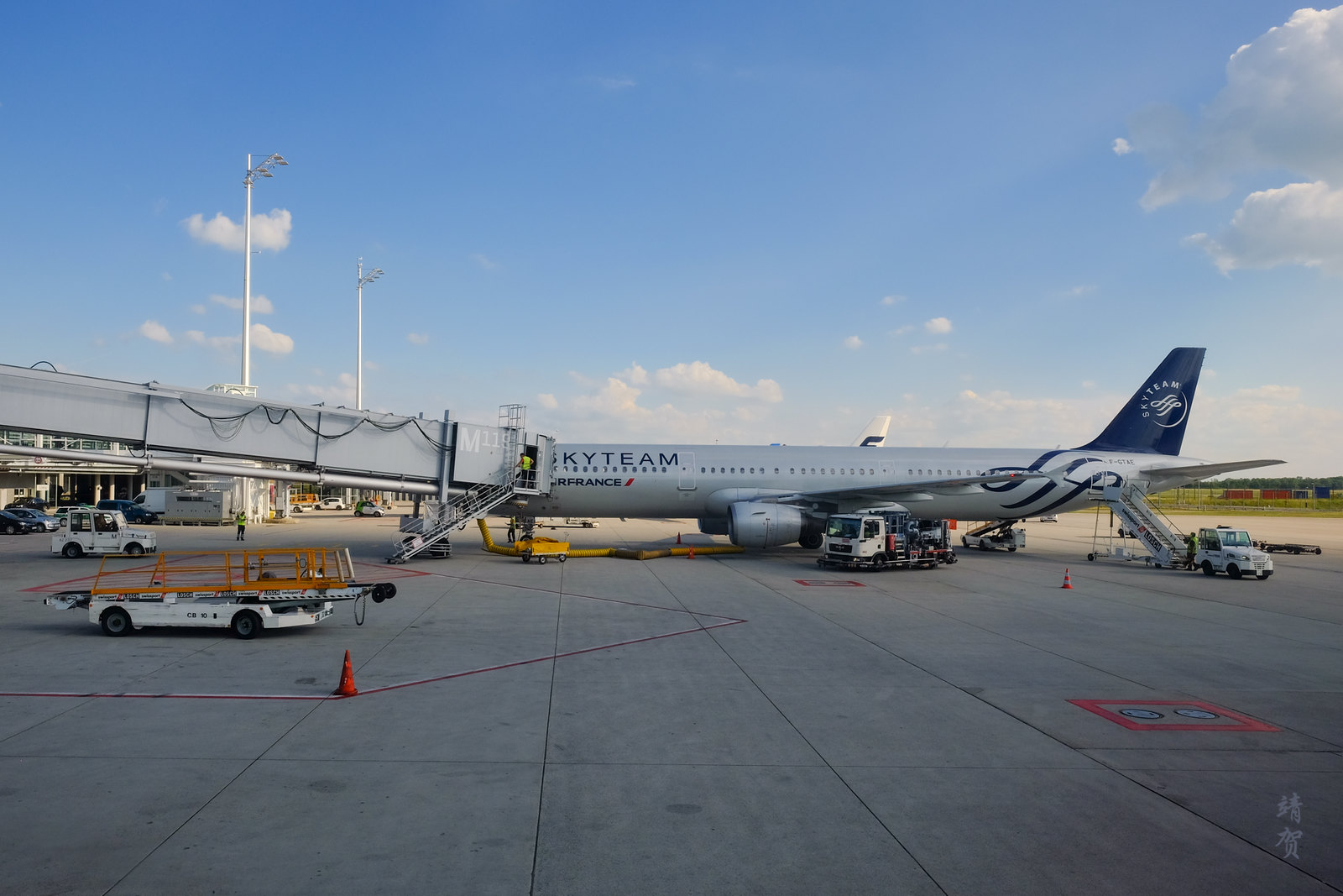 Air France Airbus A320 in Skyteam livery