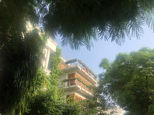 City Walk - Bucharest Marg, Vasant Vihar