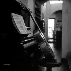 Still music (Agfa Scala B&W slide)
