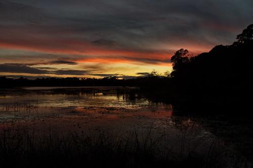sunset sigma sun olliespond olliespondpark portcharlotte florida usa us canon 18250mmf3563dcos 18250mm reflections reflection clouds sky redsky pond